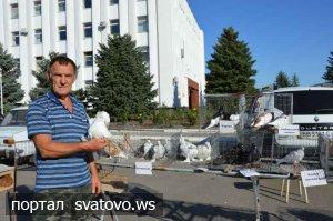 Традиційне свято голубів на Сватівщині.