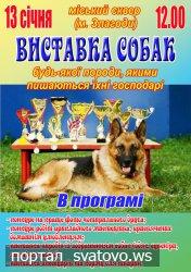 Запрошуємо на виставку собак. Сватівська Міська Рада